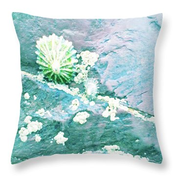 Throw Pillow featuring the photograph Soft Shell by Rebecca Harman