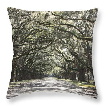 Soft Southern Day Throw Pillow by Carol Groenen