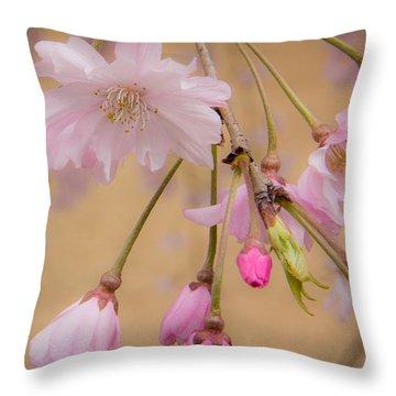 Soft Spring Blossoms Throw Pillow