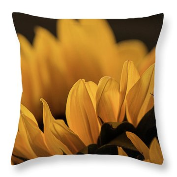 Soft Summer Light Throw Pillow