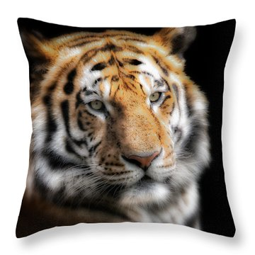 Soft Tiger Portrait Throw Pillow