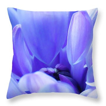 Soft Touch 2 Throw Pillow