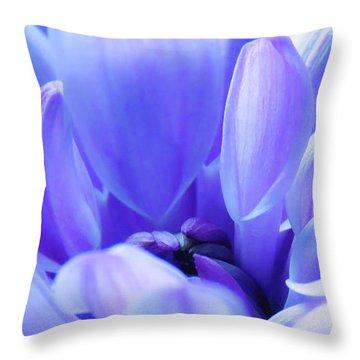 Soft Touch 2 Throw Pillow