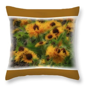 Soft Touch Black Eyed Suzy's  Throw Pillow
