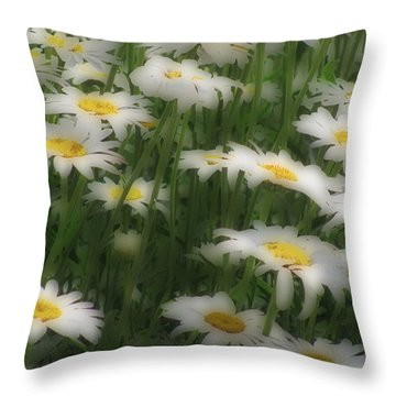 Soft Touch Daisy Throw Pillow