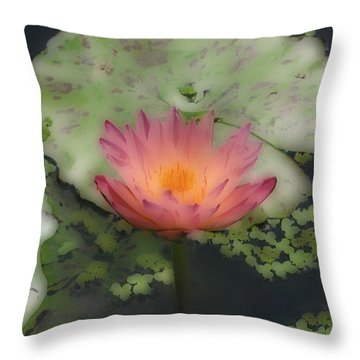 Throw Pillow featuring the photograph Soft Touch Lily by Debra     Vatalaro