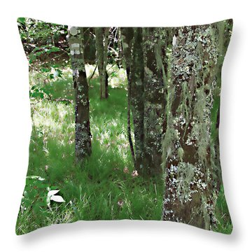 Throw Pillow featuring the photograph Soft Trees by Shari Jardina