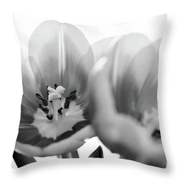 Soft Whispers Throw Pillow
