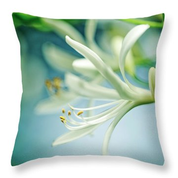 Soft White Throw Pillow