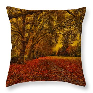Softly Falls The Evening  Light Throw Pillow