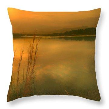 Softly Throw Pillow by Nina Fosdick