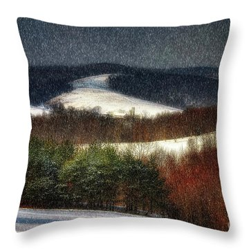Softly Sifting Throw Pillow by Lois Bryan