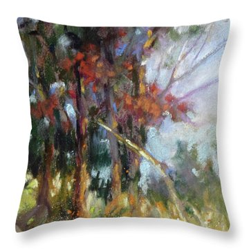 Softly, Softly Throw Pillow by Rae Andrews