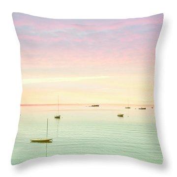 Softness And Light Throw Pillow