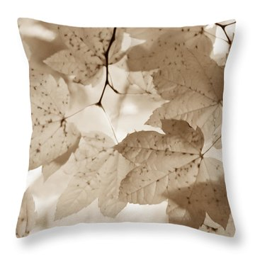 Softness Of Brown Maple Leaves Throw Pillow by Jennie Marie Schell