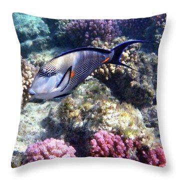Sohal Surgeonfish 5 Throw Pillow