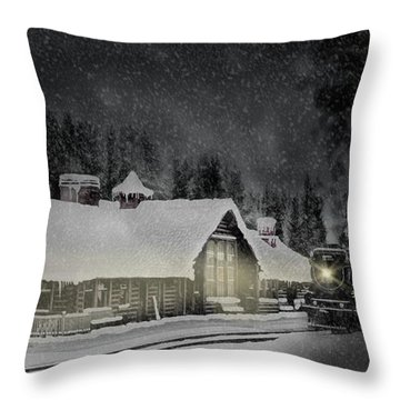 Solace From The Storm Throw Pillow