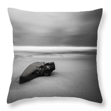 Throw Pillow featuring the photograph Solace I by Ryan Weddle