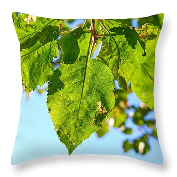 Solar Panels Throw Pillow