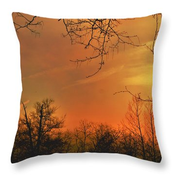 Throw Pillow featuring the photograph Solara by EDi by Darlene