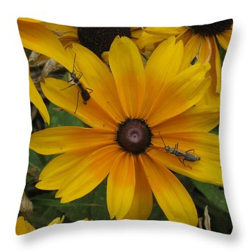 Soldiers On Patrol Throw Pillow