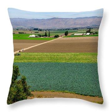 Soledad Throw Pillow