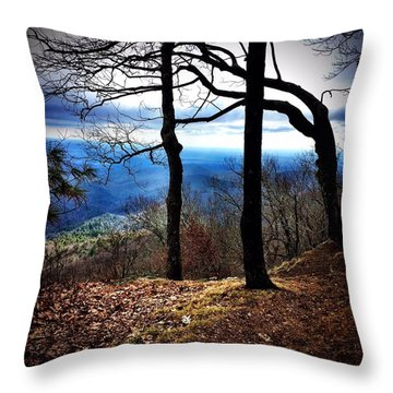 Solemn Throw Pillow