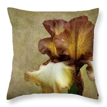 Solitaire Throw Pillow by Beve Brown-Clark Photography
