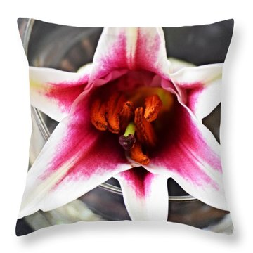 Throw Pillow featuring the photograph Solitary by Deborah  Crew-Johnson