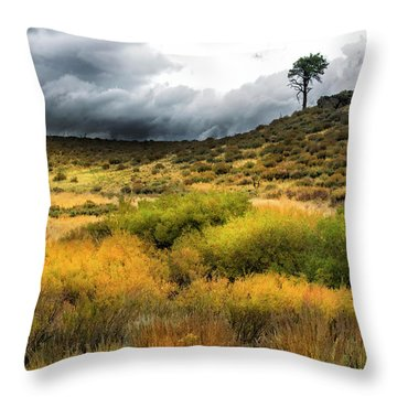 Throw Pillow featuring the photograph Solitary Pine by Frank Wilson