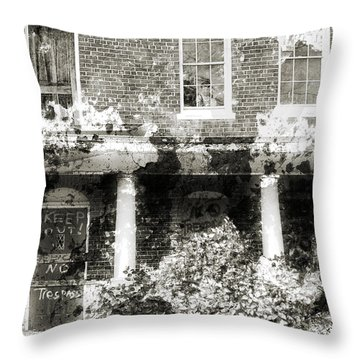 Solitary Throw Pillow by Richard Rizzo