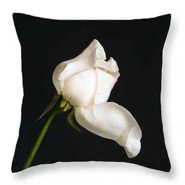 Solitary Rosebud Throw Pillow by Margie Avellino