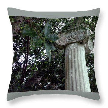 Throw Pillow featuring the photograph   Solitary by Steve Sperry