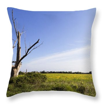 Solitary Tree Throw Pillow