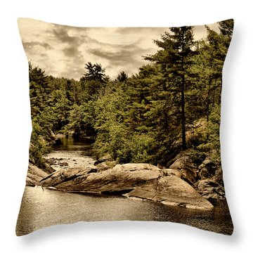 Solitary Wilderness Throw Pillow