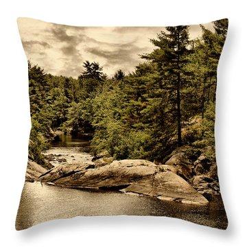 Solitary Wilderness Throw Pillow