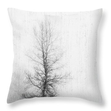 Throw Pillow featuring the photograph Solitude  by Alana Ranney