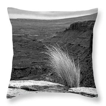 Solitude Throw Pillow by Alex Galkin
