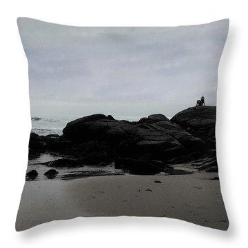 Solitude At Goose Rocks Throw Pillow