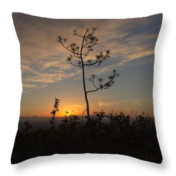 Solitude At Solidad Throw Pillow