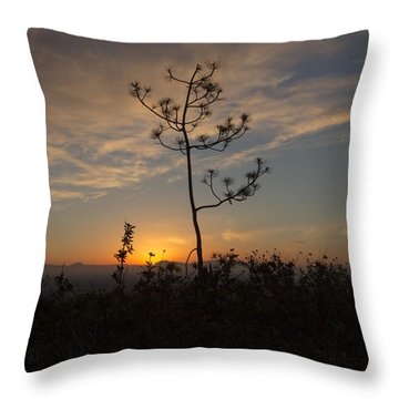 Solitude At Solidad Throw Pillow