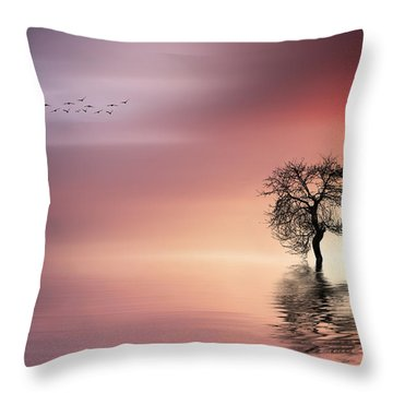 Solitude Throw Pillow by Bess Hamiti