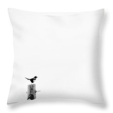 Throw Pillow featuring the photograph Solitude by Bitter Buffalo Photography