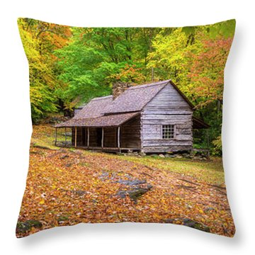 Solitude  Throw Pillow by Bjorn Burton