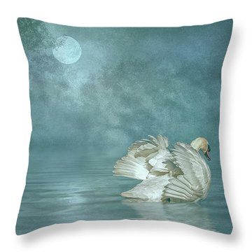 Solitude Throw Pillow by Brian Tarr