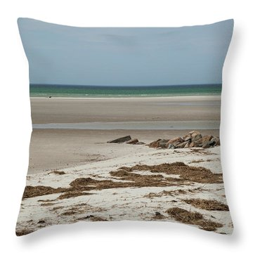 Throw Pillow featuring the photograph Solitude By The Seashore by Michelle Wiarda