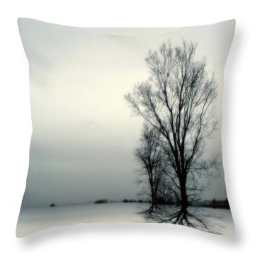 Throw Pillow featuring the digital art Solitude by Elfriede Fulda