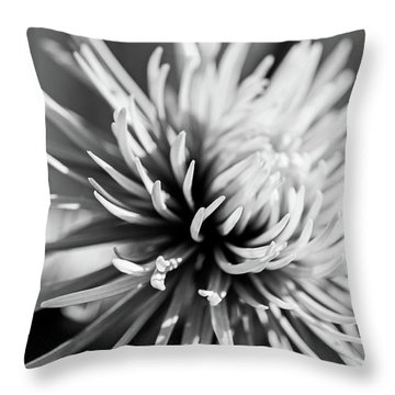 Solitute Throw Pillow