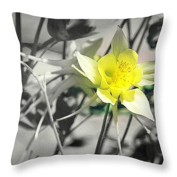Solo  Throw Pillow by Clarice Lakota