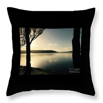 Solo Duck In The Sun Throw Pillow